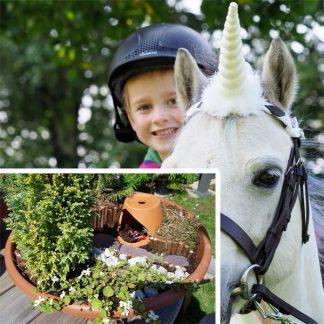 Unicorn-Garden-Workshop